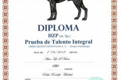 Diploma-HZP-Astor-00282