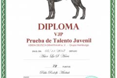 Diploma-VJP-Astor-00282