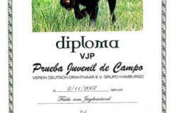 diploma-vjp-frida00140