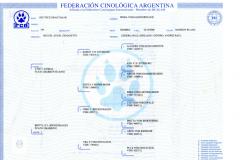 pedigree-frida00140